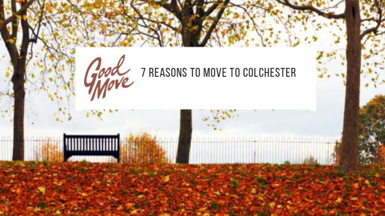 7 Reasons To Move To Colchester